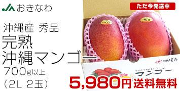 沖縄マンゴー 秀品 2玉