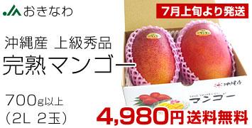 完熟マンゴー秀品2L×2