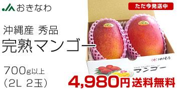 沖縄秀品マンゴー2玉