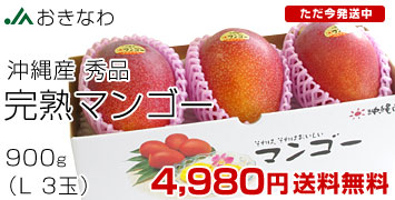 沖縄秀品マンゴー3玉