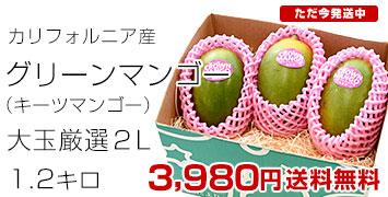 グリーンマンゴー1.2キロ