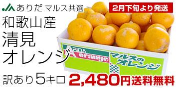 訳あり清見オレンジ