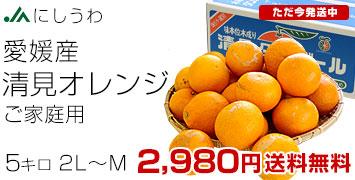 ご家庭用清見オレンジ5kg