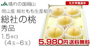 総社の桃 1.5キロ