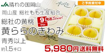 黄ららのきわみ 1.5キロ