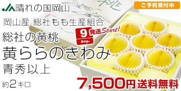 黄ららのきわみ 2キロ