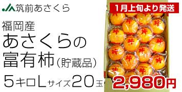 あさくらの富有柿5kg