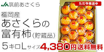 朝倉の富有柿(甘柿) <貯蔵品>約5キロ
