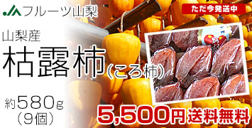 コロ柿580g