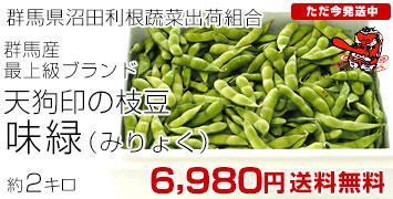 味緑2キロ