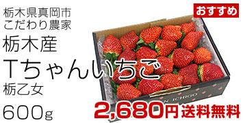 Tちゃんイチゴ600g