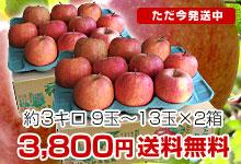太陽ふじりんご2箱