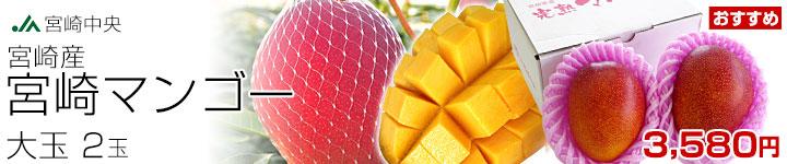 マンゴー2玉