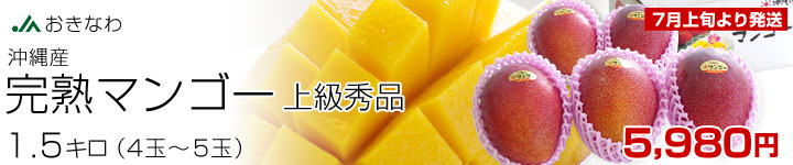 完熟マンゴー秀品1.5k