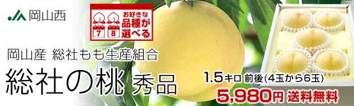 総社の桃1.5kg