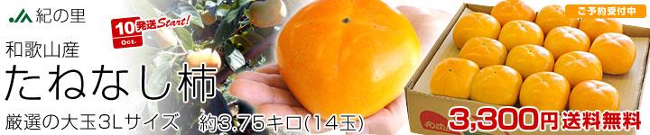 たねなし柿 大玉3L