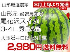 3-4L1玉