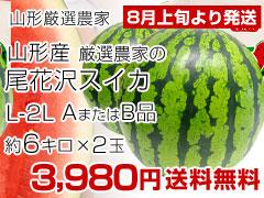L-2L2玉