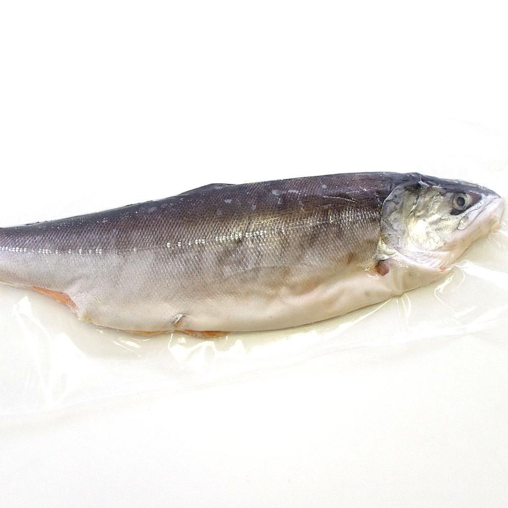 北海道加工 時鮭 半身900g