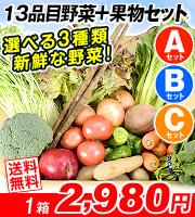13品目野菜セット