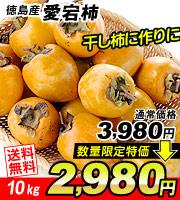 愛宕柿10kg