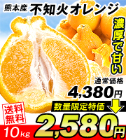 不知火オレンジ10kg