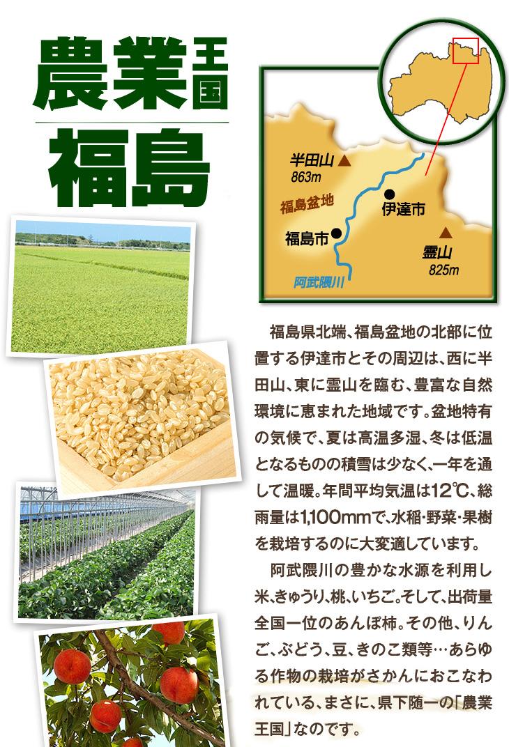 農業王国福島