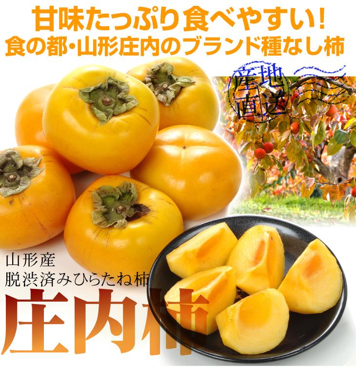 庄内柿TOP2