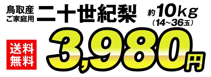 20世紀梨値段