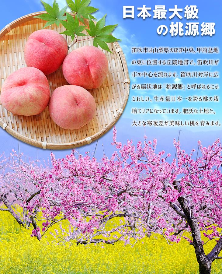 https://shopping.geocities.jp/seikaokoku/img/food/2020/fuefuki01.jpg