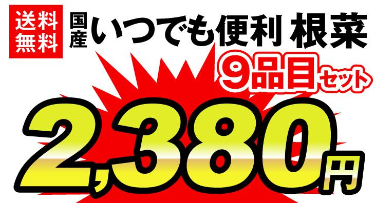根菜9品目価格2380円