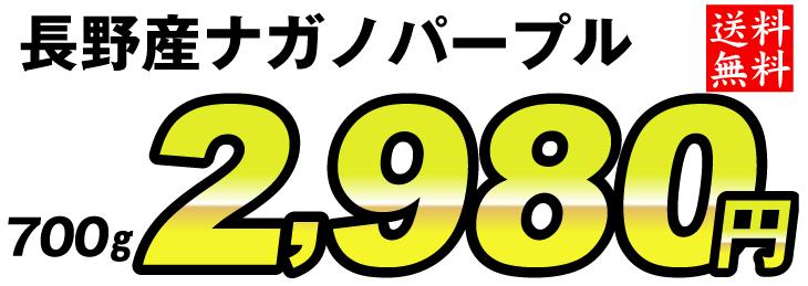 f81369