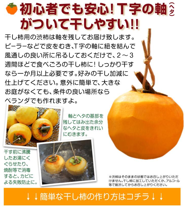 軸付き高瀬柿