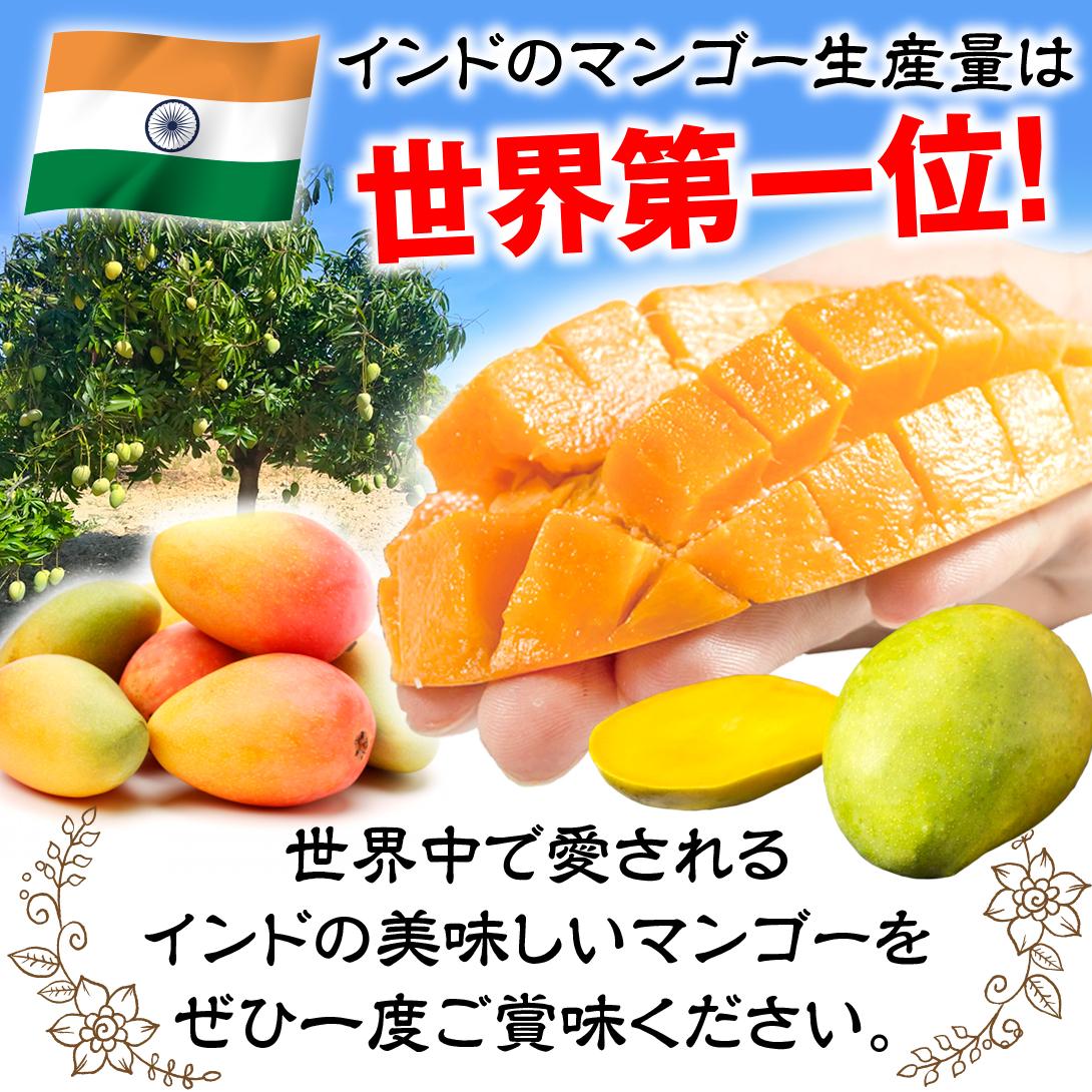 インドマンゴー説明