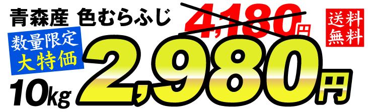 色むらふじ2980