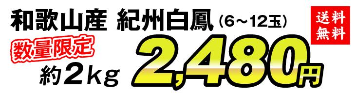 紀州白鳳2480円