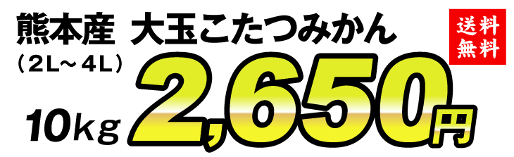 熊本こたつみかん2650円