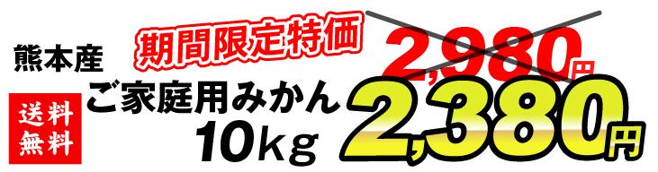 熊本みかん2380円
