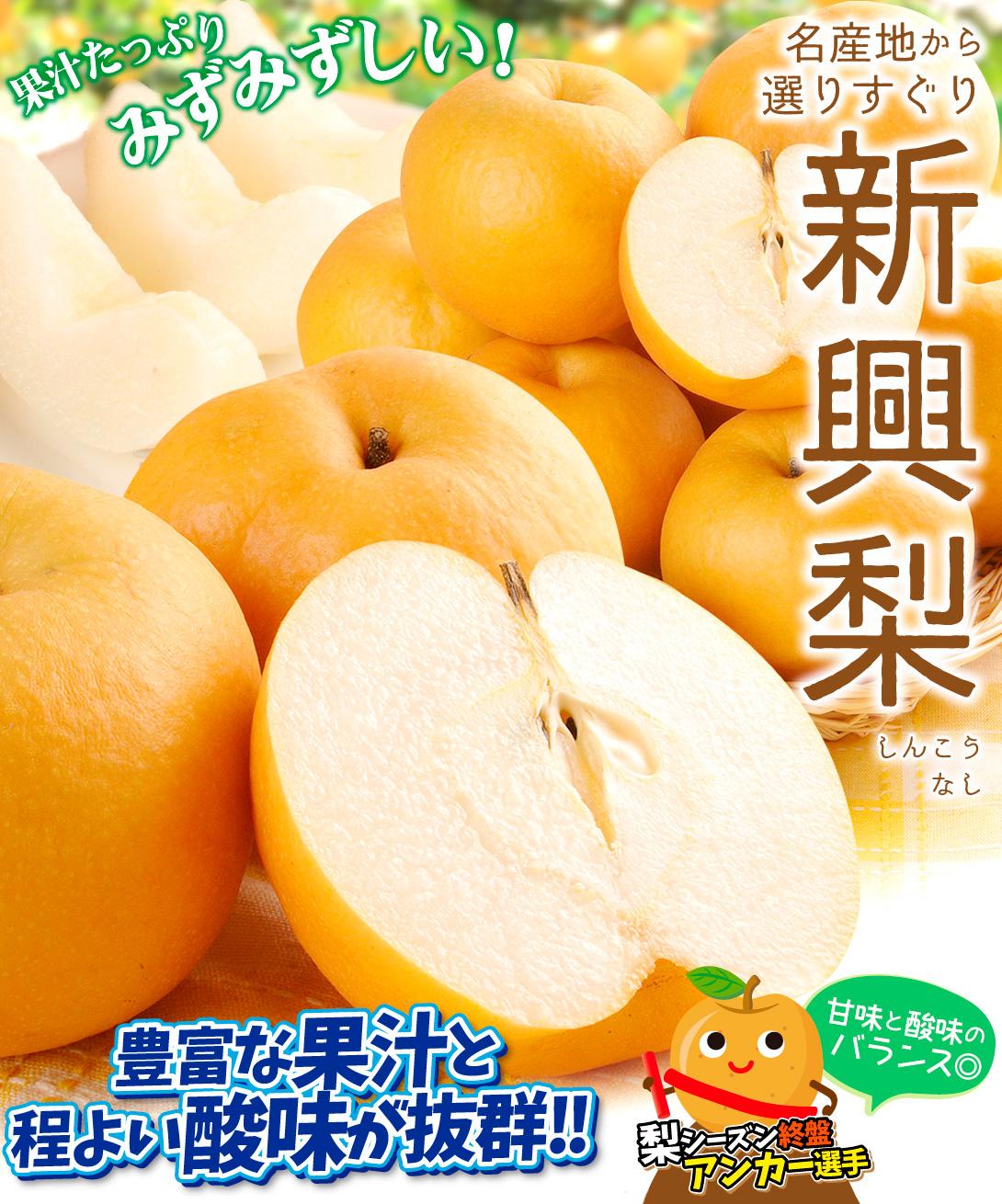 新興梨トップ