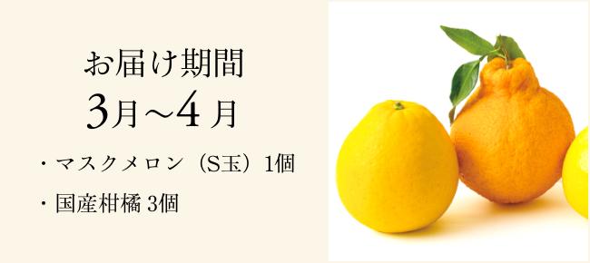 季節のフルーツ