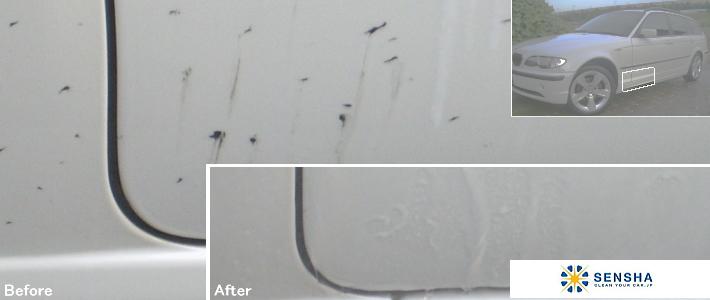 タール ピッチ 除去剤 クリーナー/カーシャンプー/洗車/洗車用品/自動車シャンプー/水垢/水垢除去