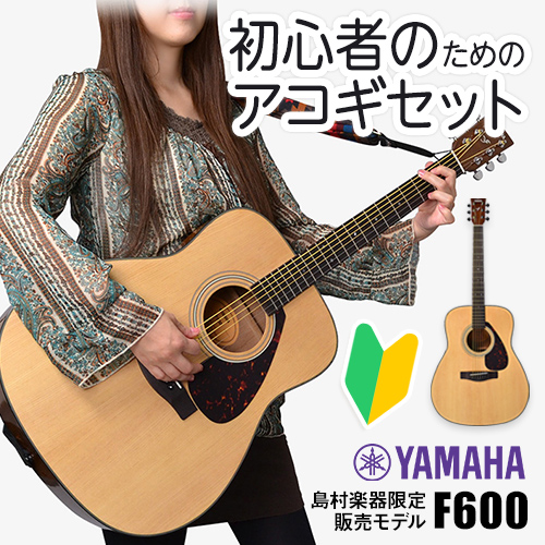初心者のためのアコギセット YAMAHA F600
