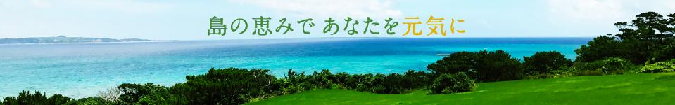 島のめぐみであなたを元気に