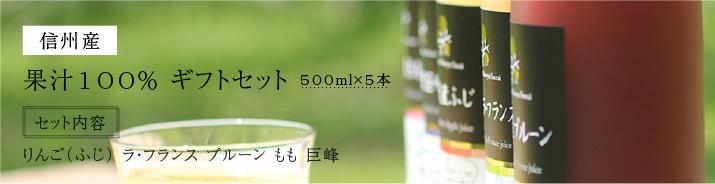 信州産果物ジュース5本セット