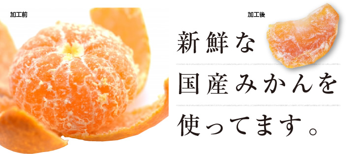 国産ドライフルーツみかん・ミカン
