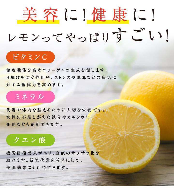 ドライフルーツ塩レモン・熱中症対策に