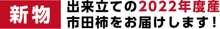 市田柿(渋柿・干し柿・干柿)送料無料