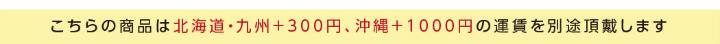北海道・九州・沖縄への発送は別途送料をいただきます