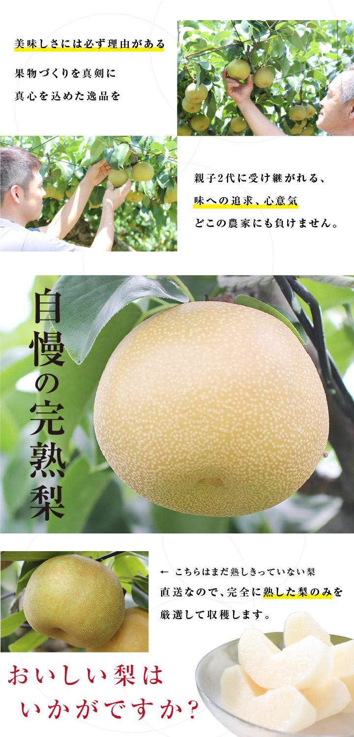 作り方にこだわった自慢の梨