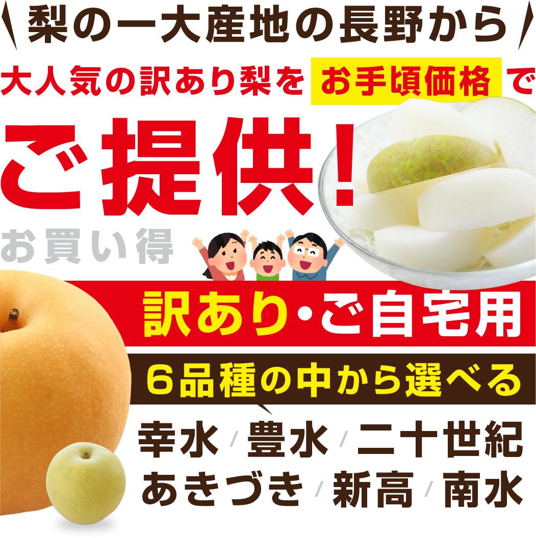 訳あり梨 幸水・豊水 長野県産 5kg
